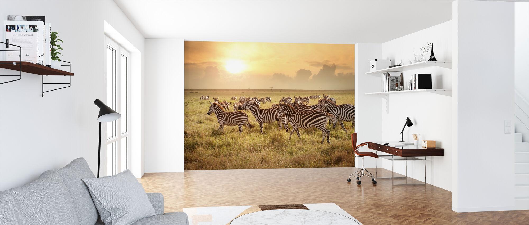Zebras in the Morning - Wallpaper - Office