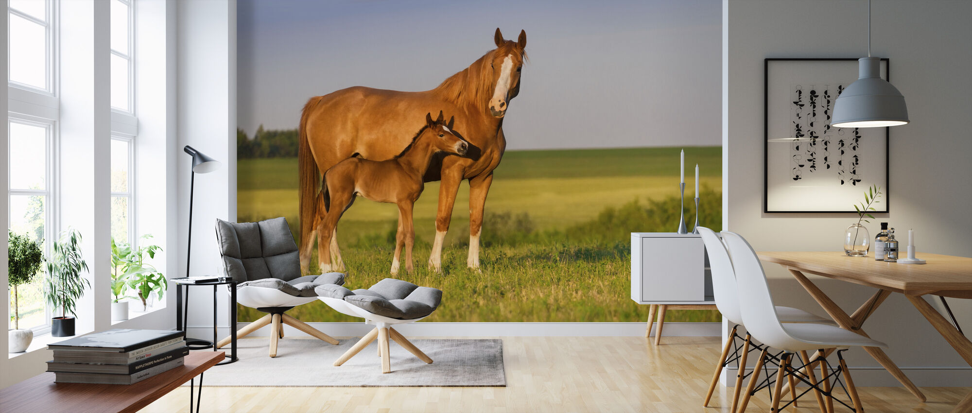 Mare with Foal - Wallpaper - Living Room