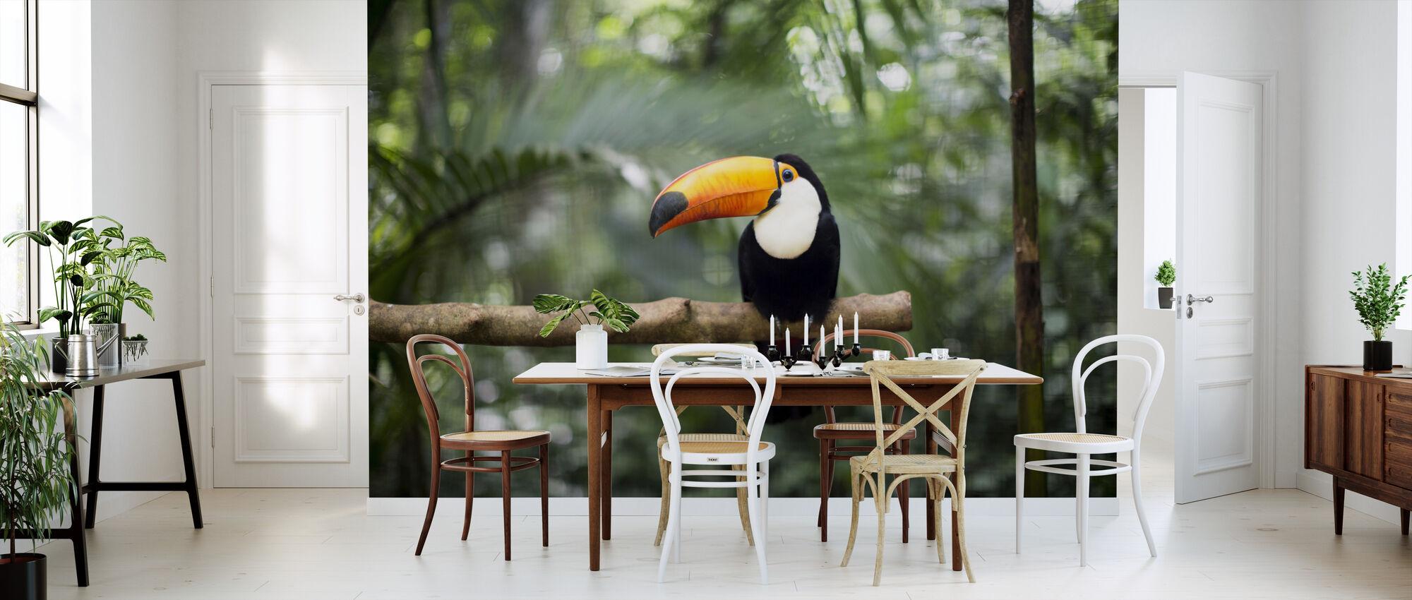 Tukan auf dem Zweig - Tapete - Küchen