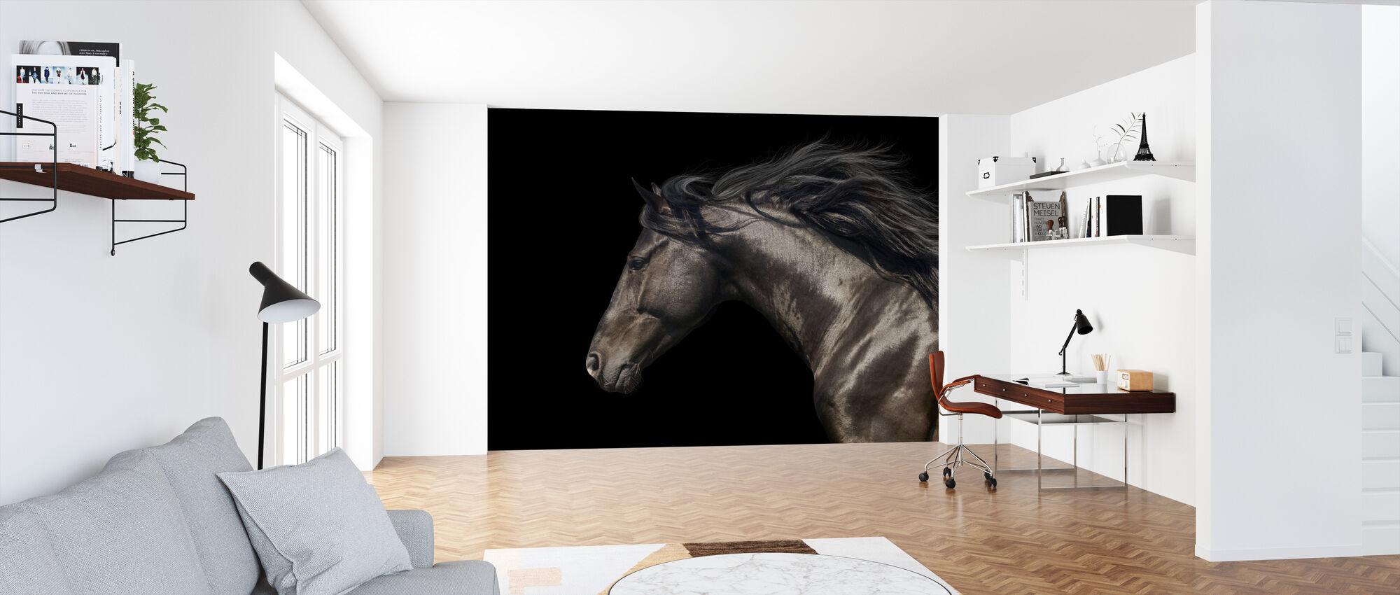 Black Horse - Wallpaper - Office
