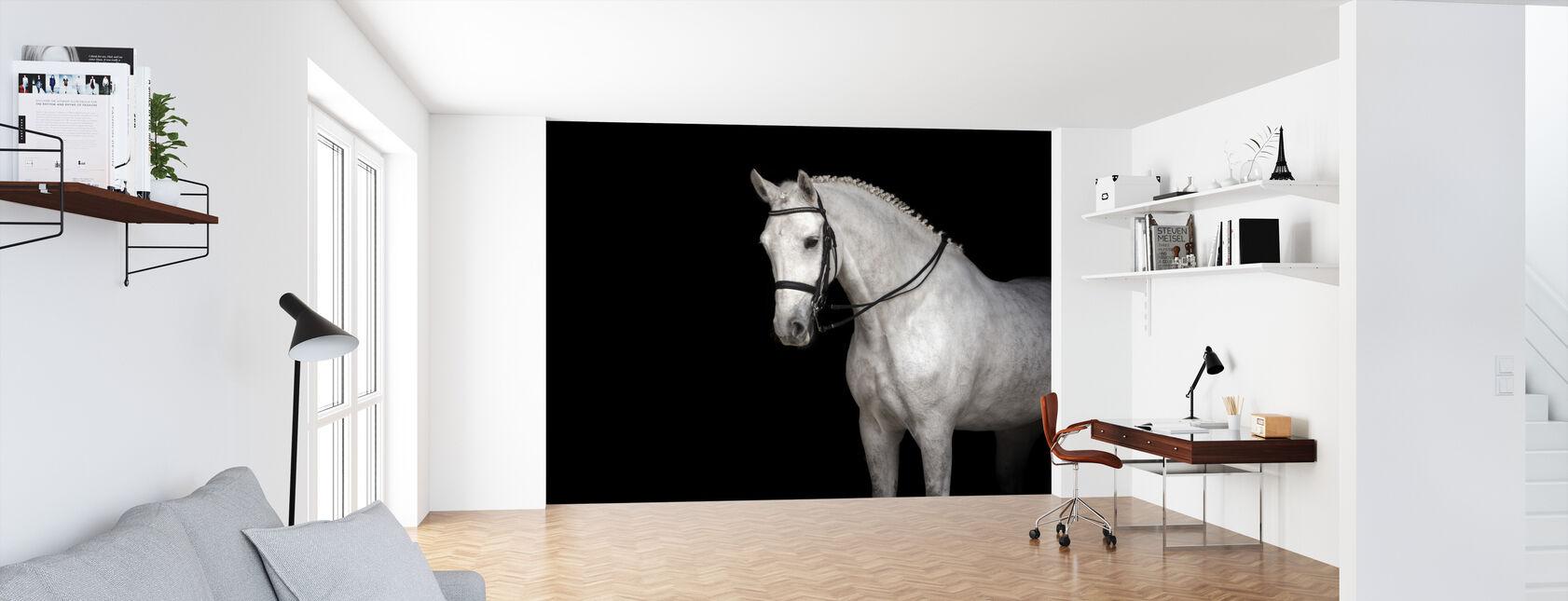 White Horse Dressage - Wallpaper - Office
