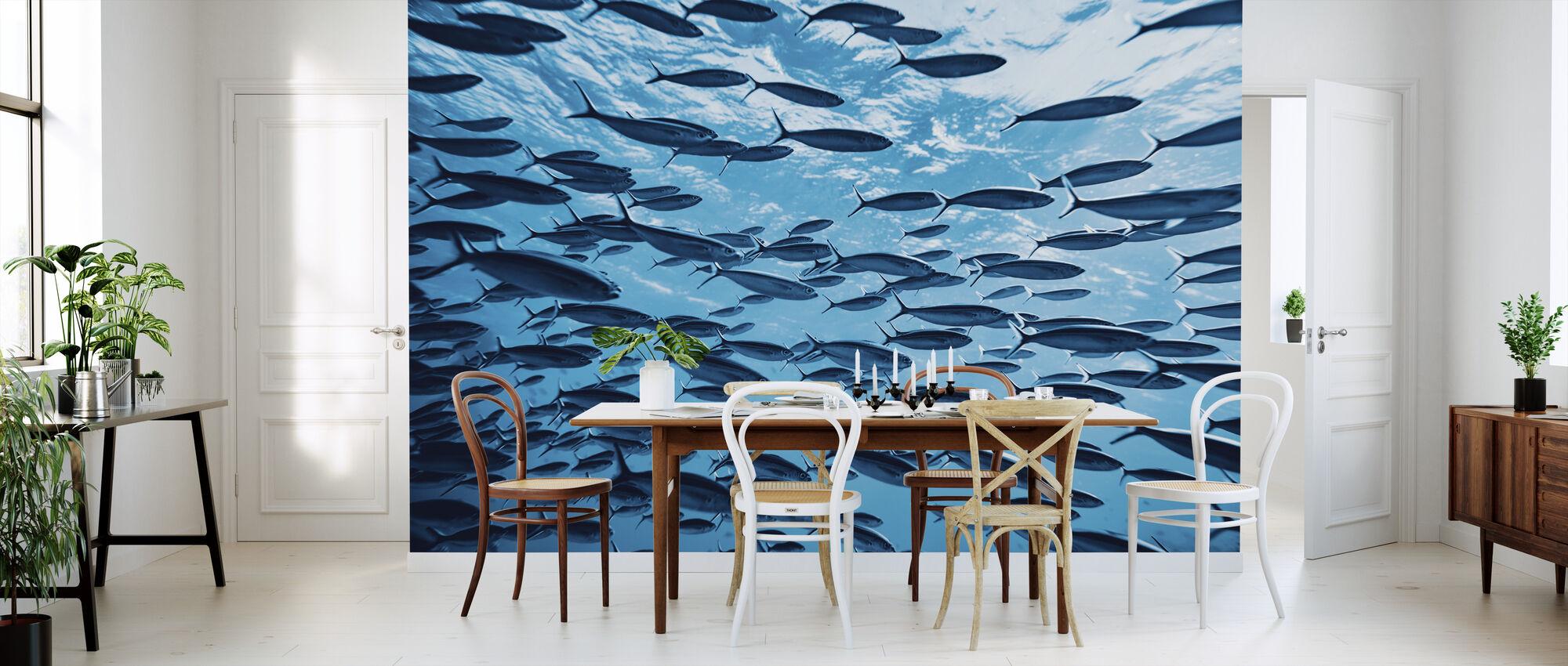 Tropical Fishes Underwater - Wallpaper - Kitchen