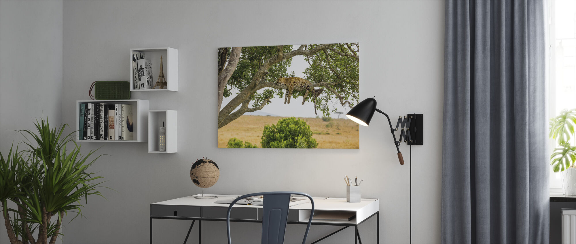 Leopard Sleeping in Tree - Canvas print - Office