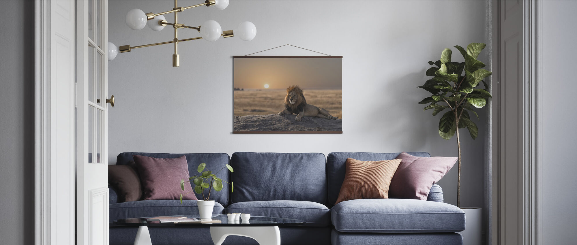 Lion Sitting on the Rock - Poster - Living Room