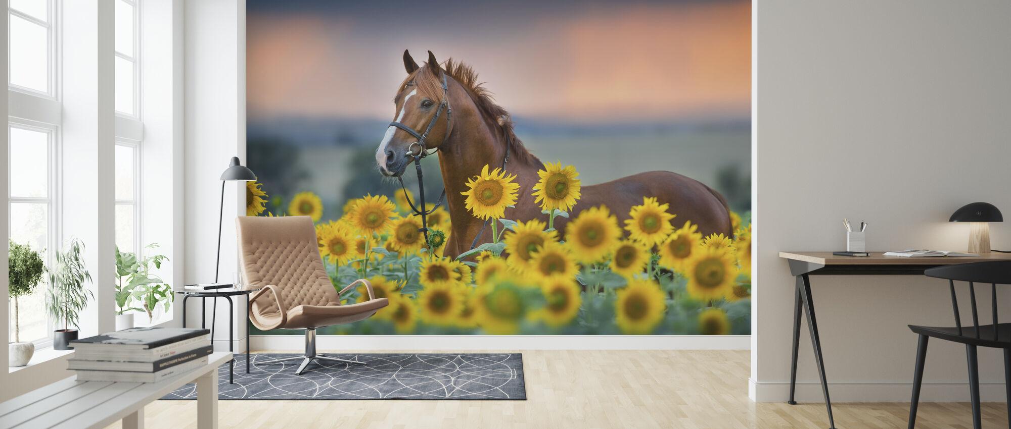 Rød hest i Solsikker Field - Tapet - Stue
