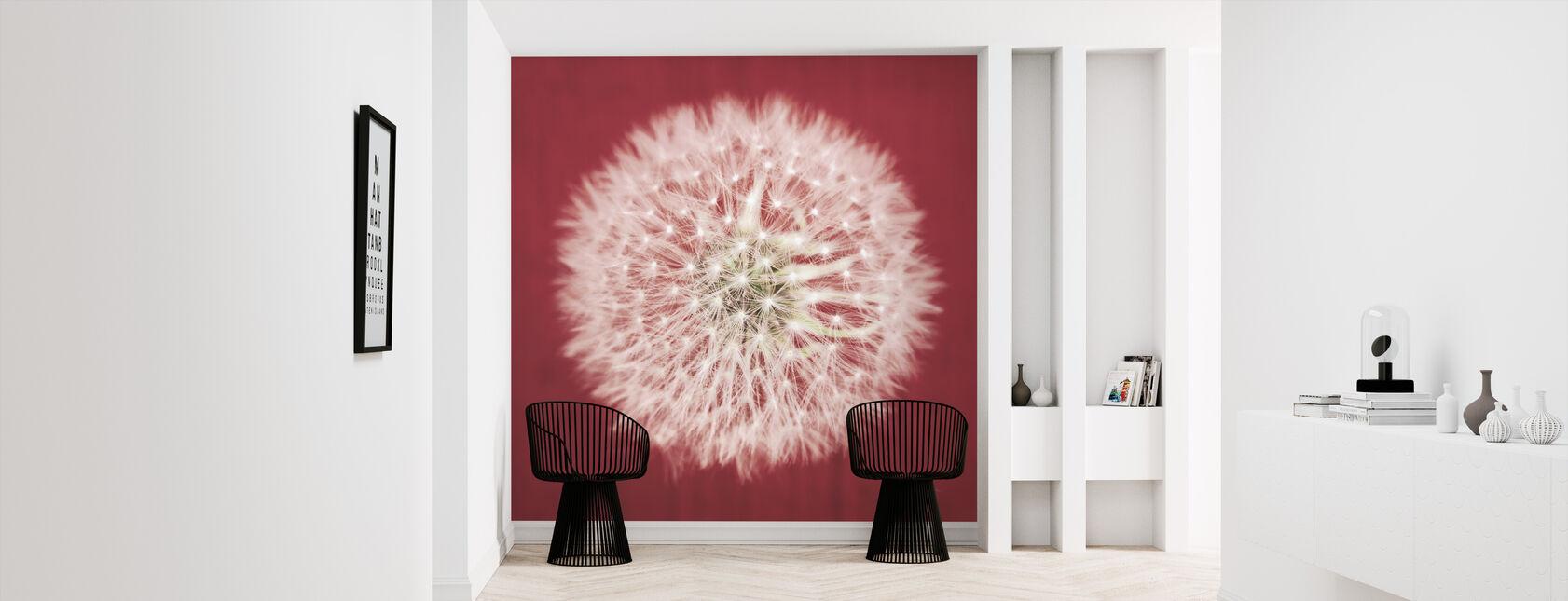 Dandelion on Red - Wallpaper - Hallway
