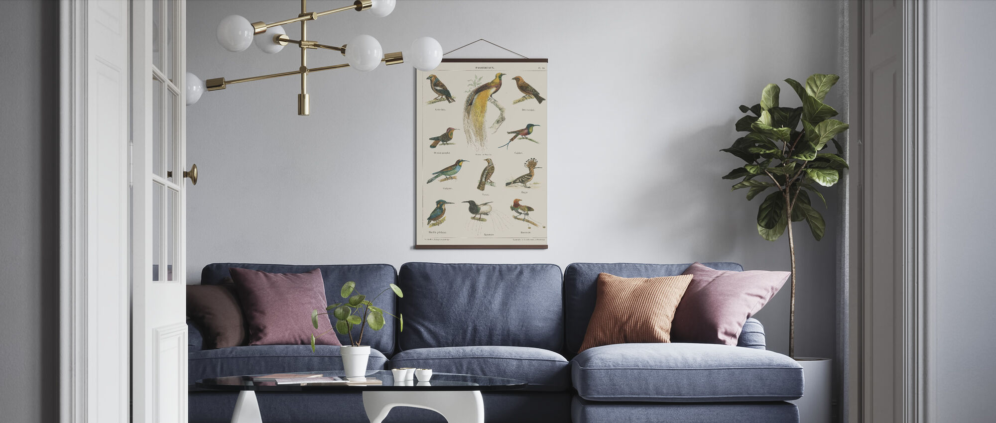 Bird Chart I - Poster - Living Room