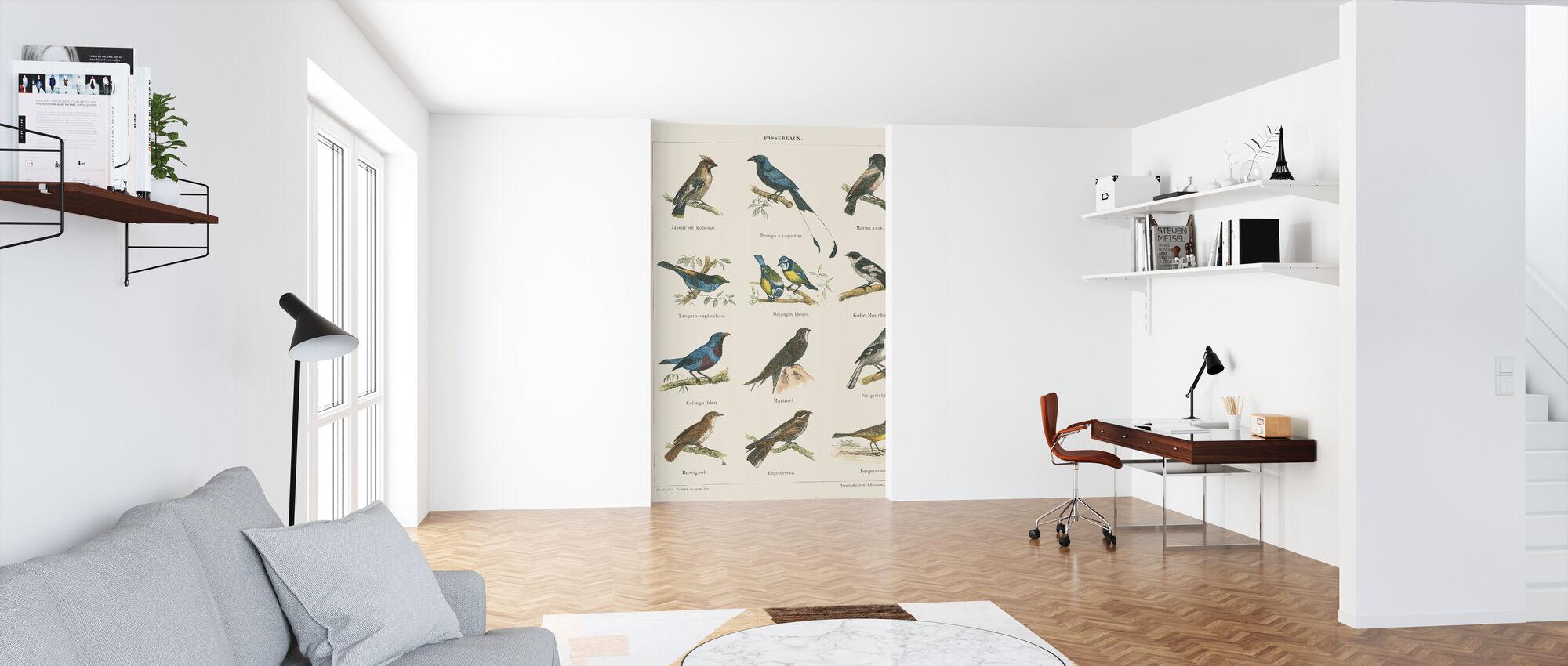 Bird Chart II - Wallpaper - Office