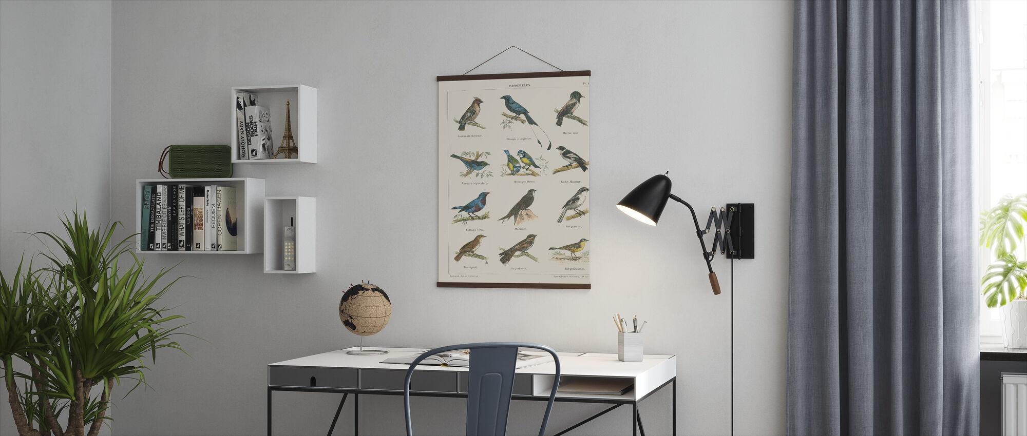 Fågeldiagram II - Poster - Kontor