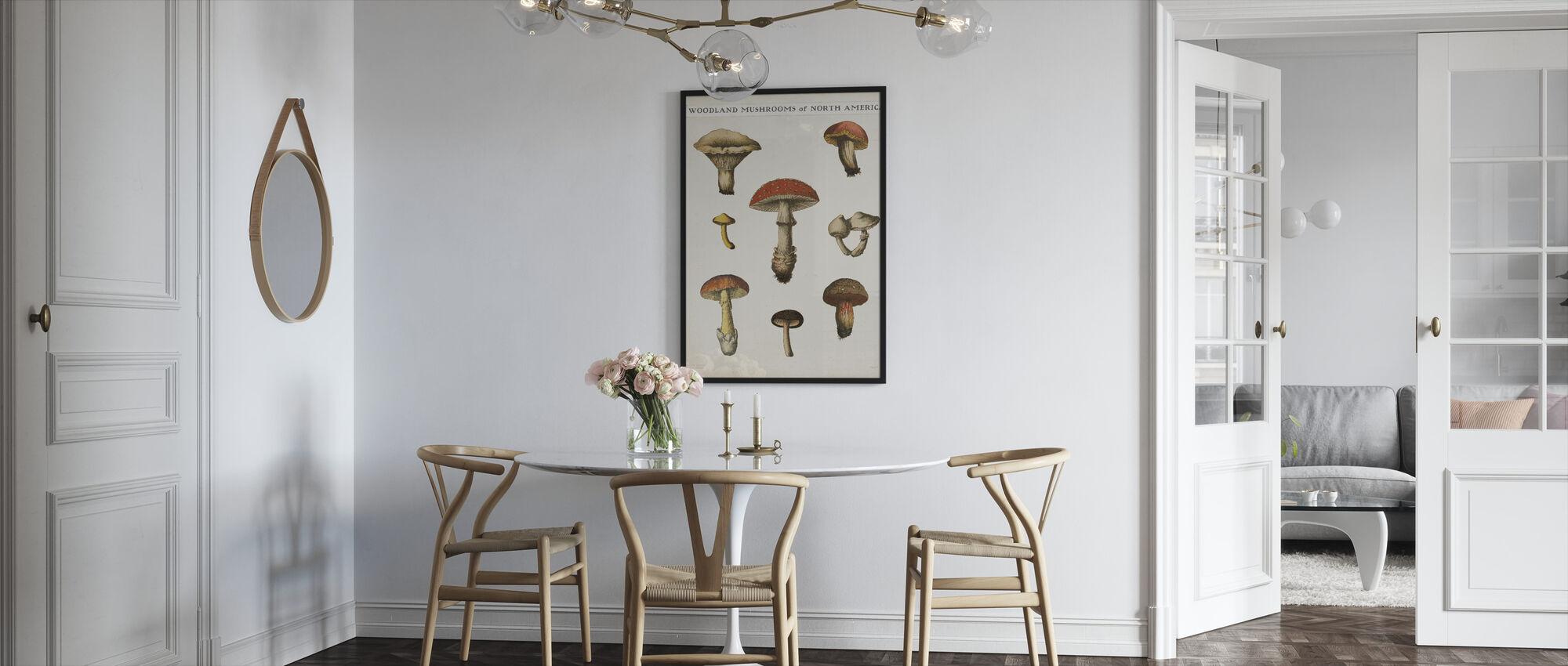 Mushroom Chart - Framed print - Kitchen