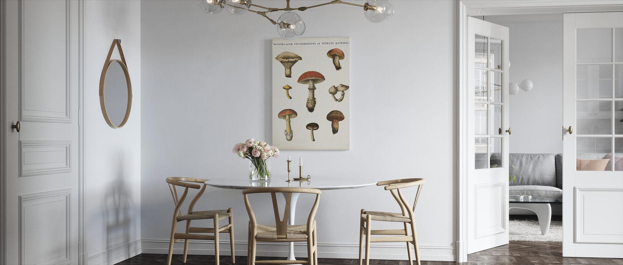 Mushroom Chart - Canvas print - Kitchen
