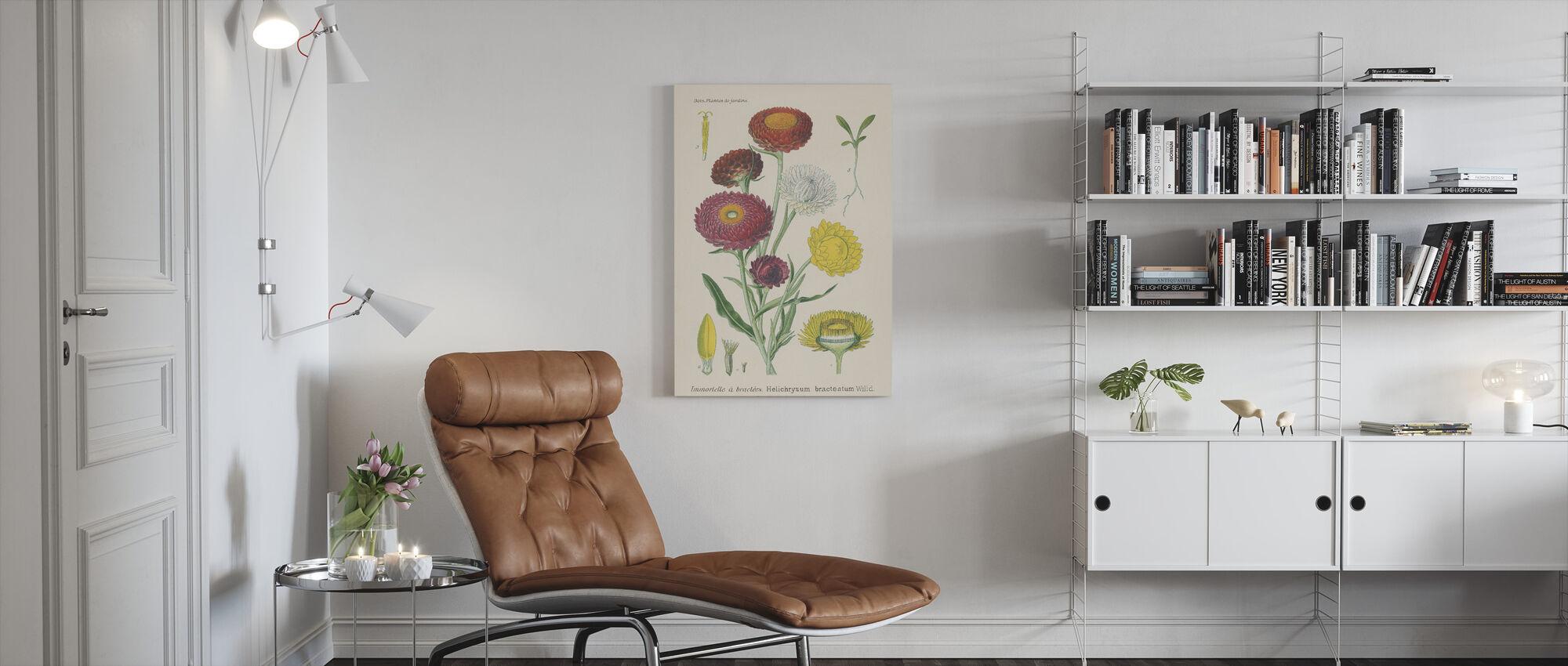 Antique Botanical - Canvas print - Living Room