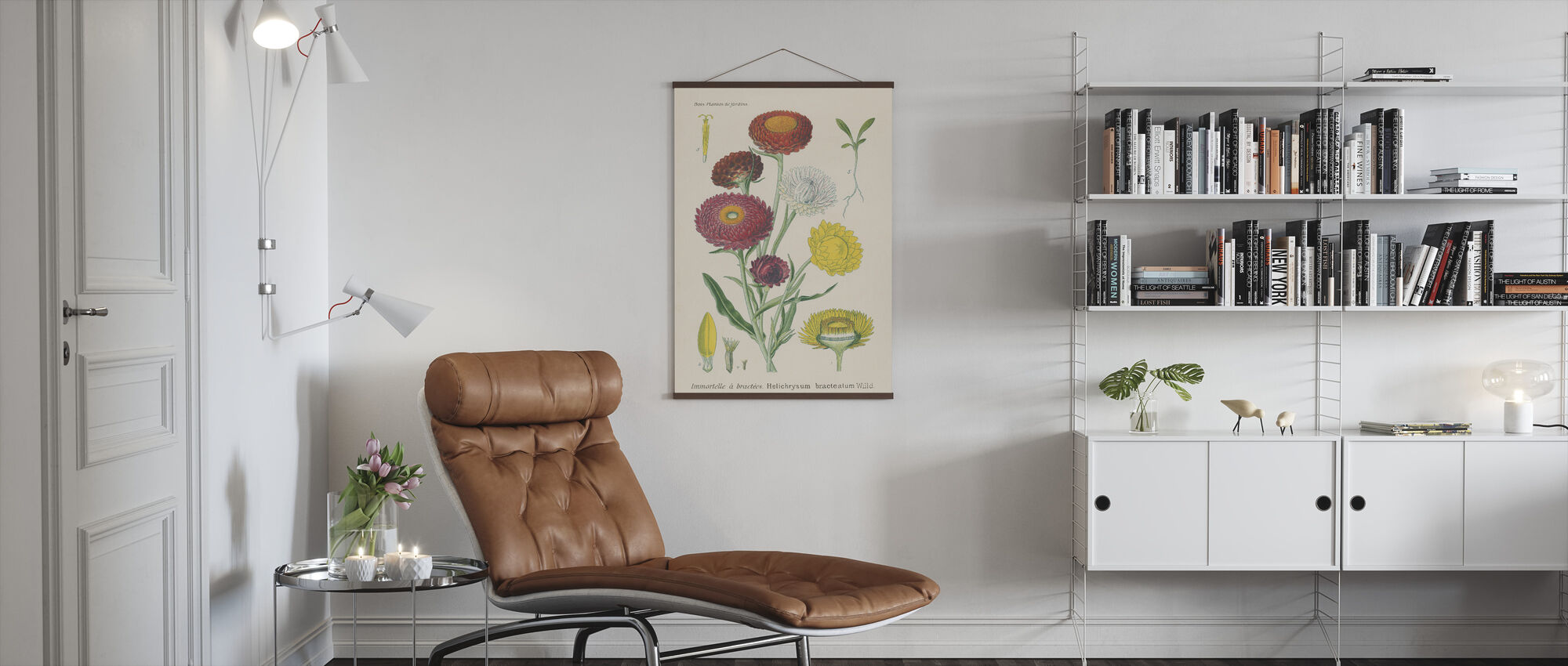 Antique Botanical - Poster - Living Room