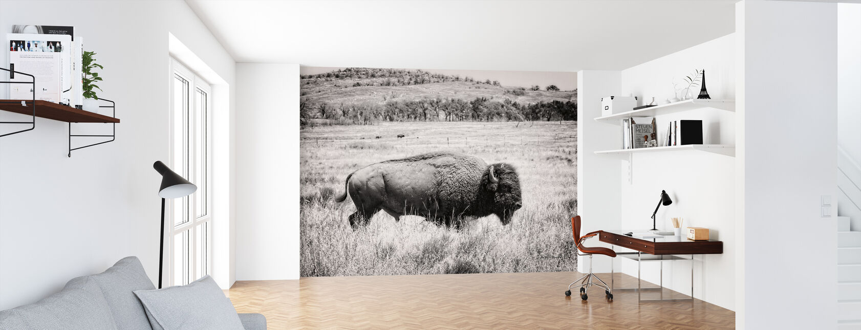 Buffalo - Wallpaper - Office