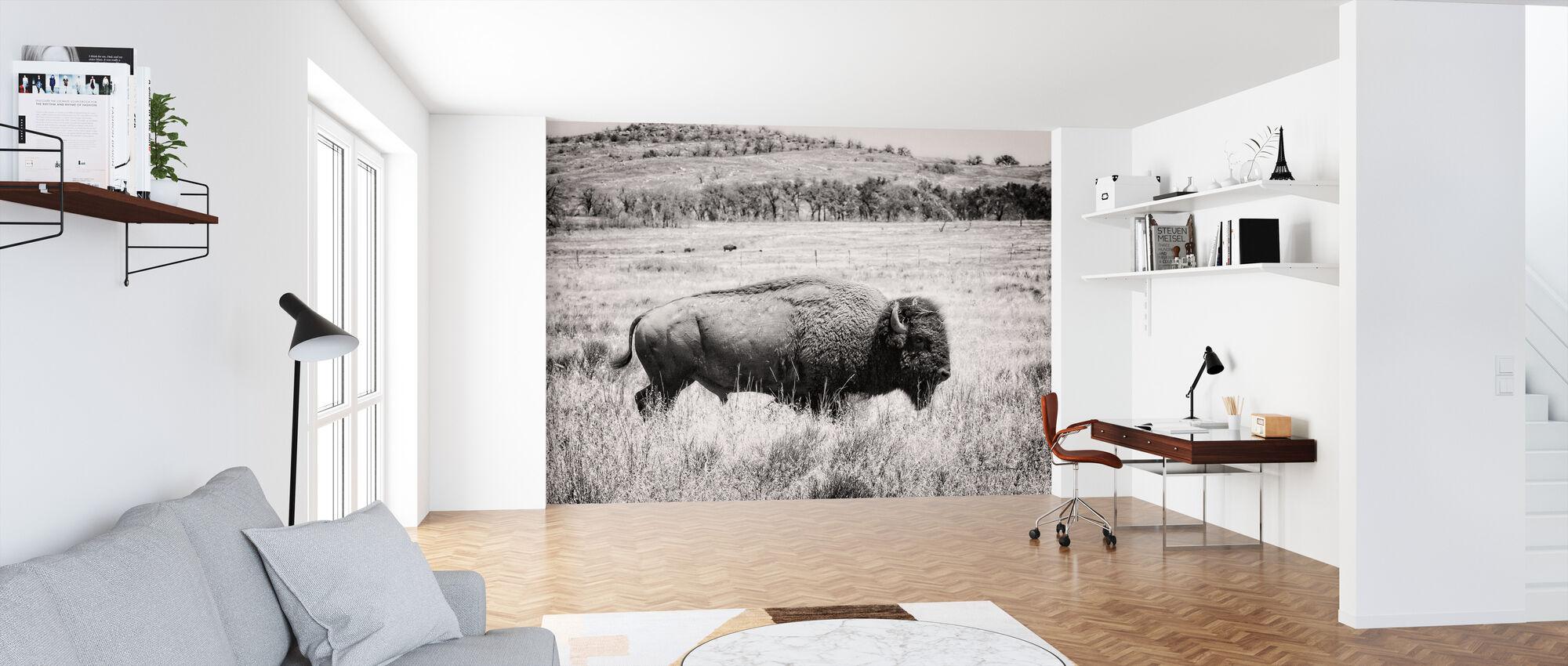 Buffel - Tapet - Kontor