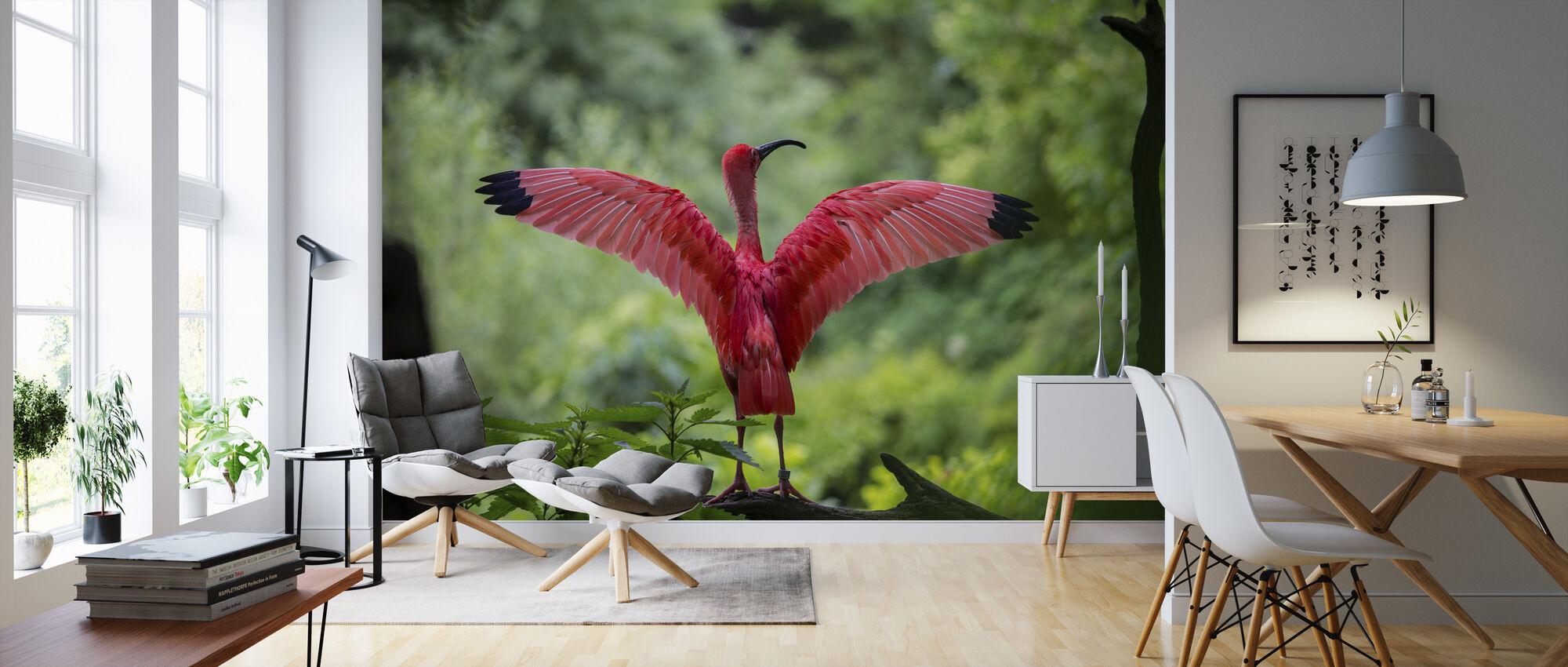 Beautiful Bird - Wallpaper - Living Room