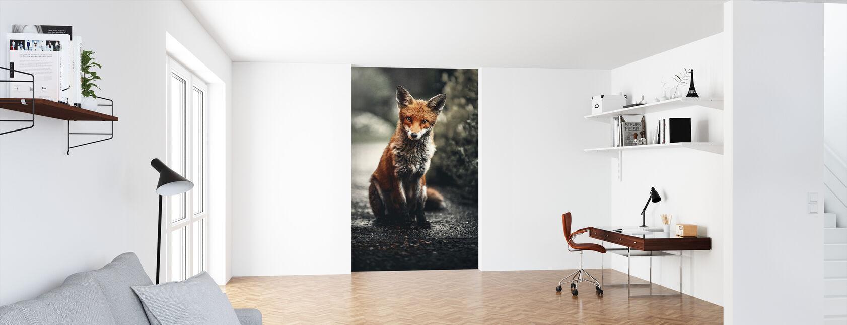 Fox Study - Tapet - Kontor