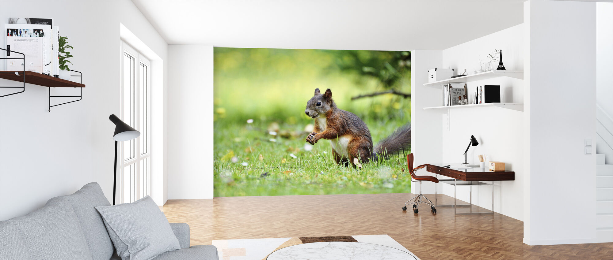 Squirrel Census - Wallpaper - Office