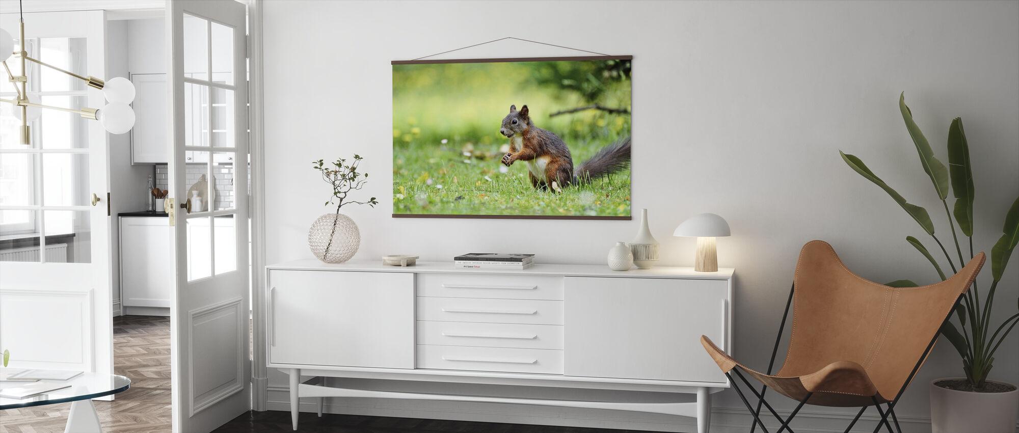 Spis wiewiórek - Plakat - Pokój dzienny