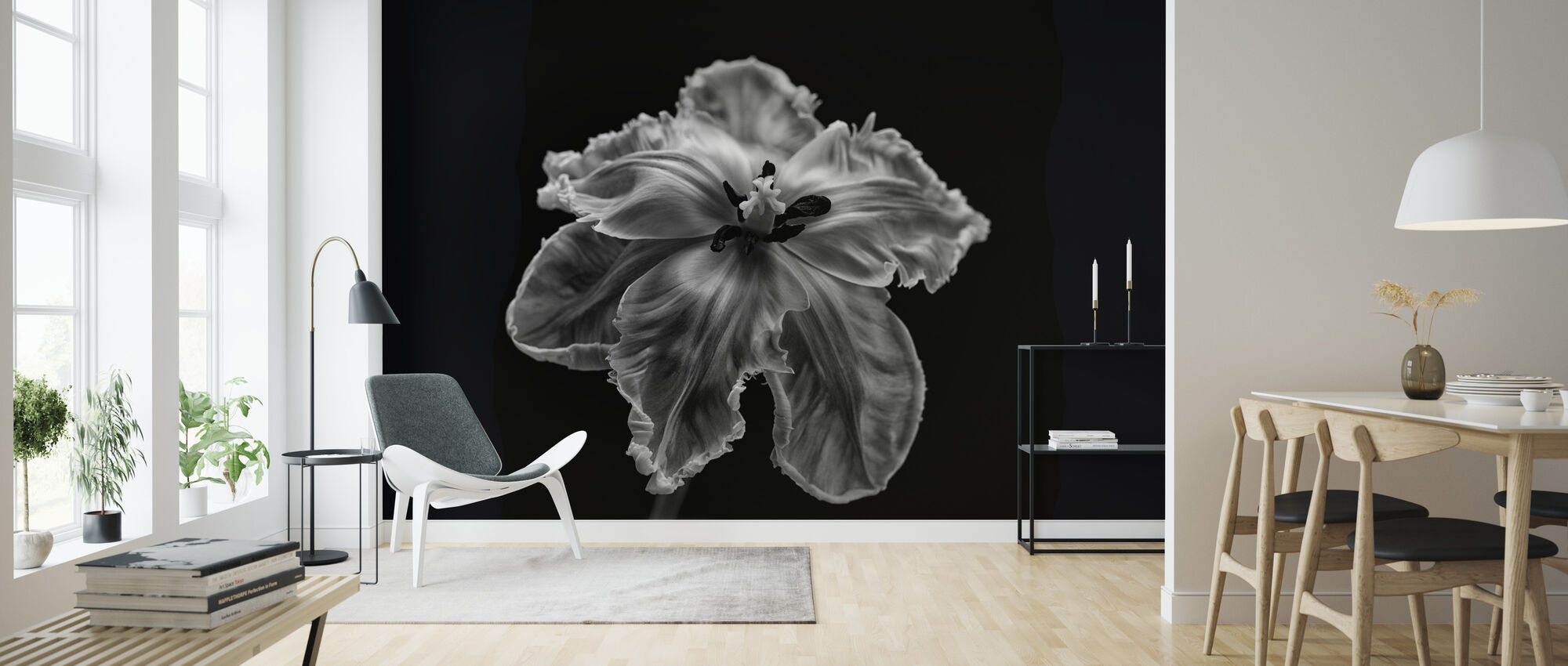 Black and White Parrot Tulip - Wallpaper - Living Room