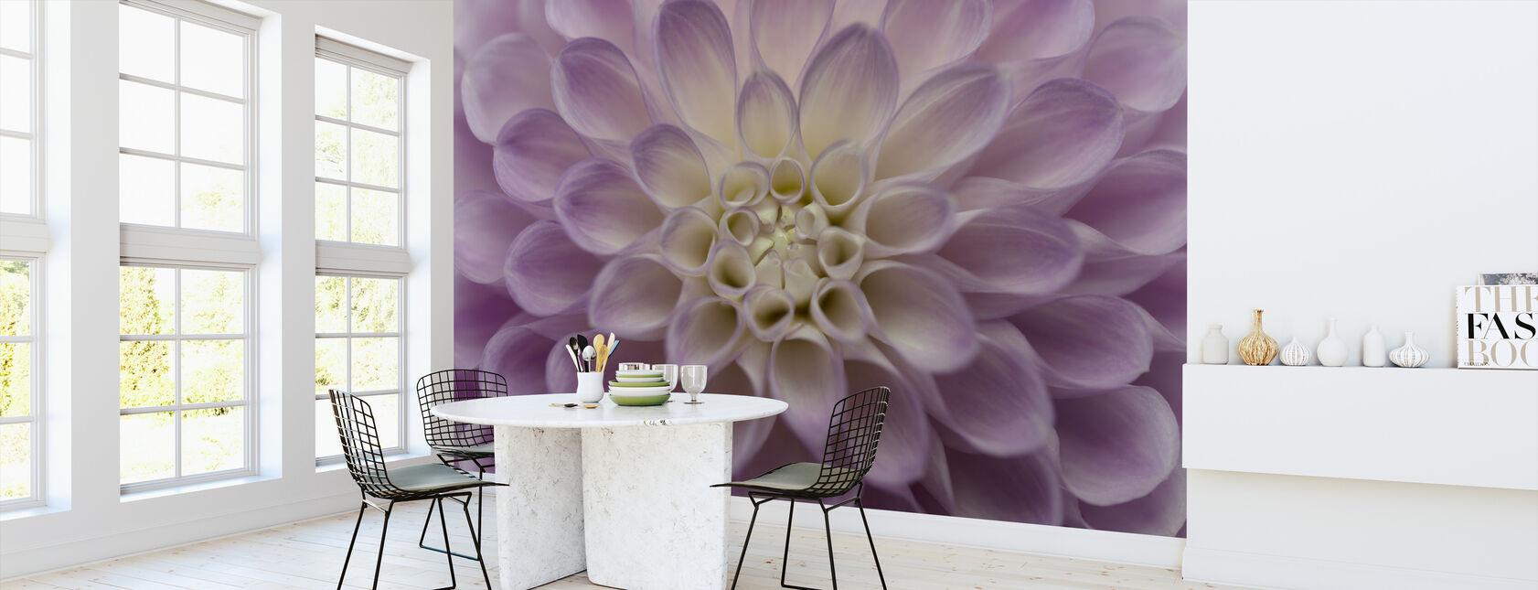 Dahlia - Wallpaper - Kitchen