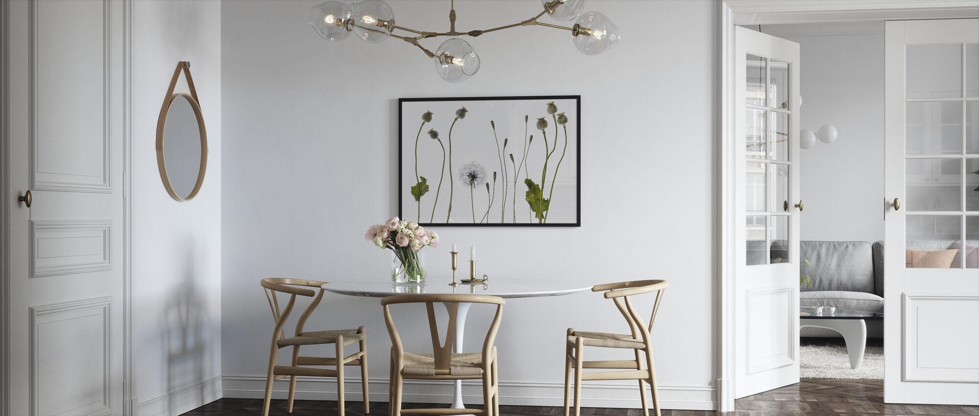 Poppy Pods - Framed print - Kitchen