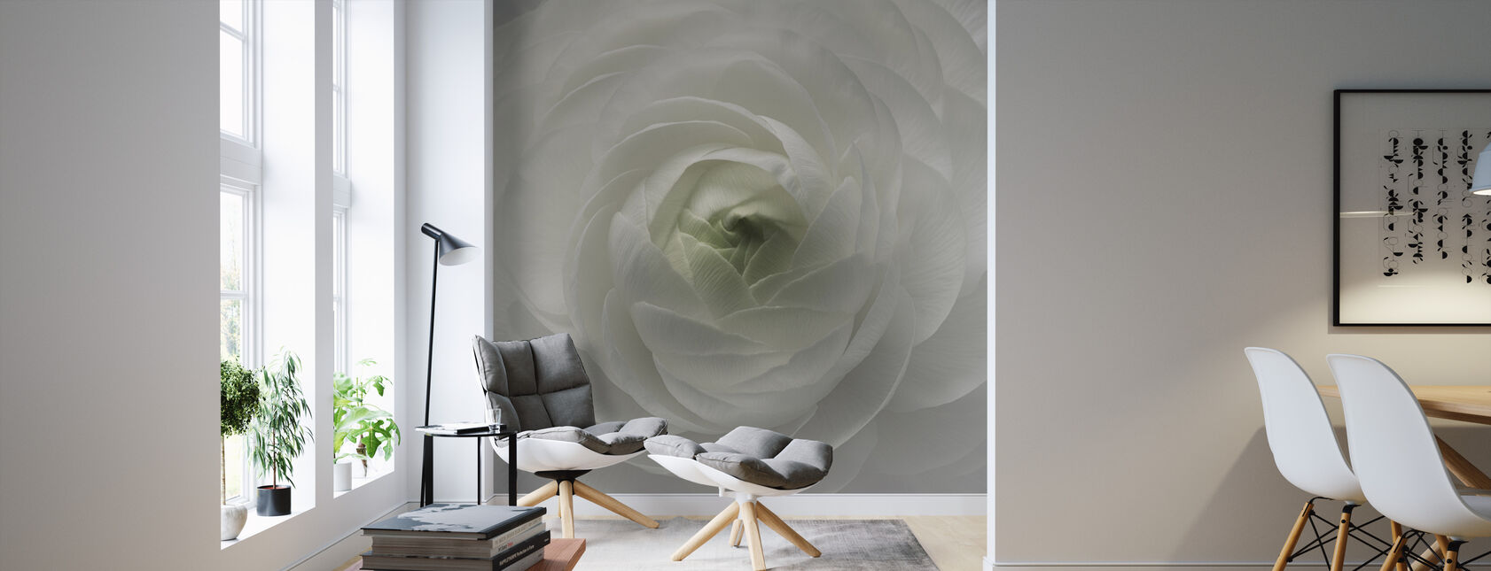 Ranunculus - Wallpaper - Living Room