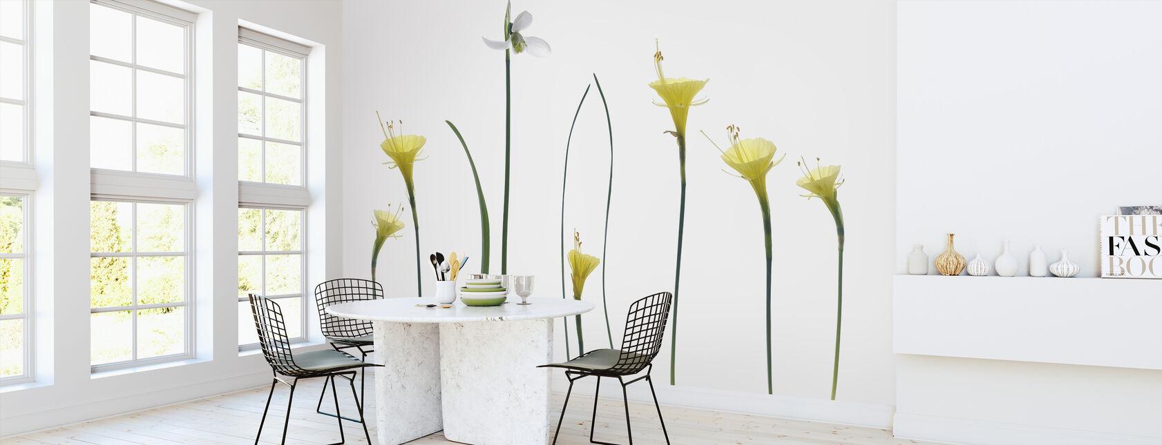 Spring Flowers - Wallpaper - Kitchen