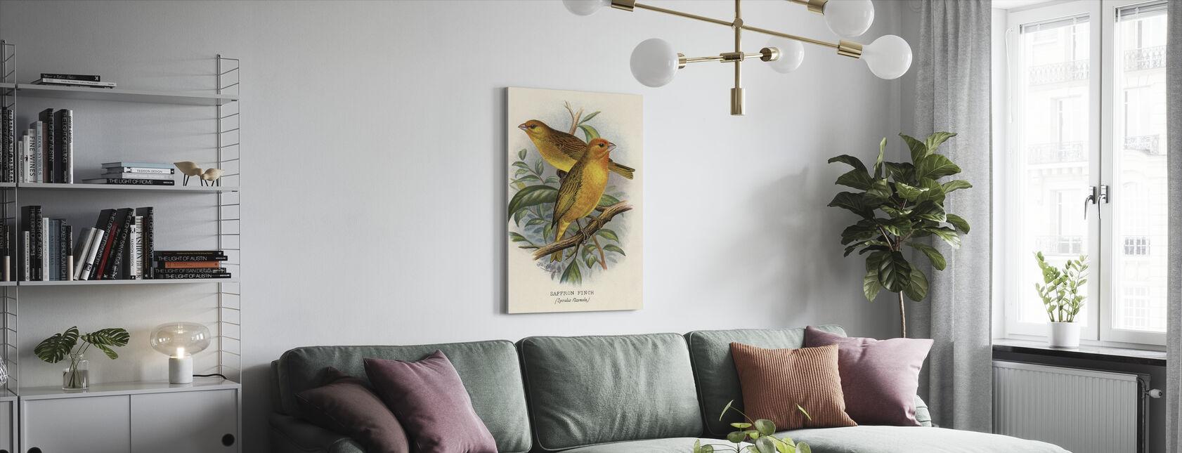 Saffraan Finch - Frederik William Frohawk - Canvas print - Woonkamer