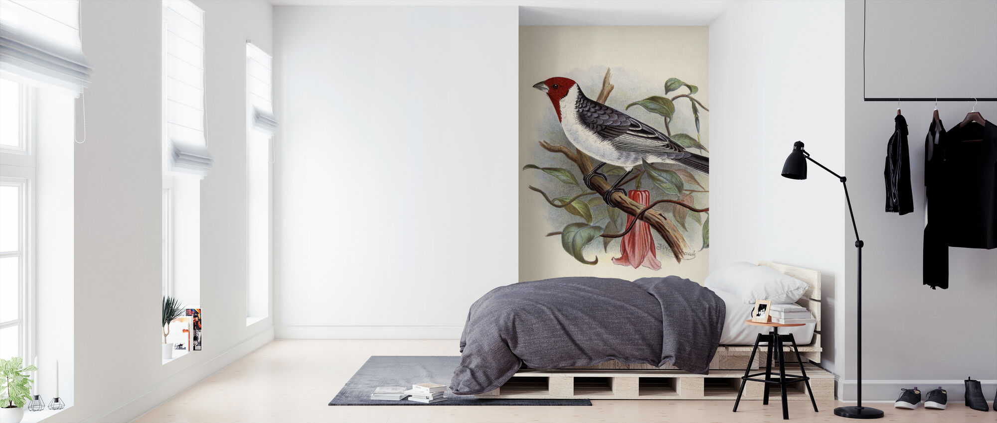 Foreign Finches - Frederick William Frohawk - Wallpaper - Bedroom
