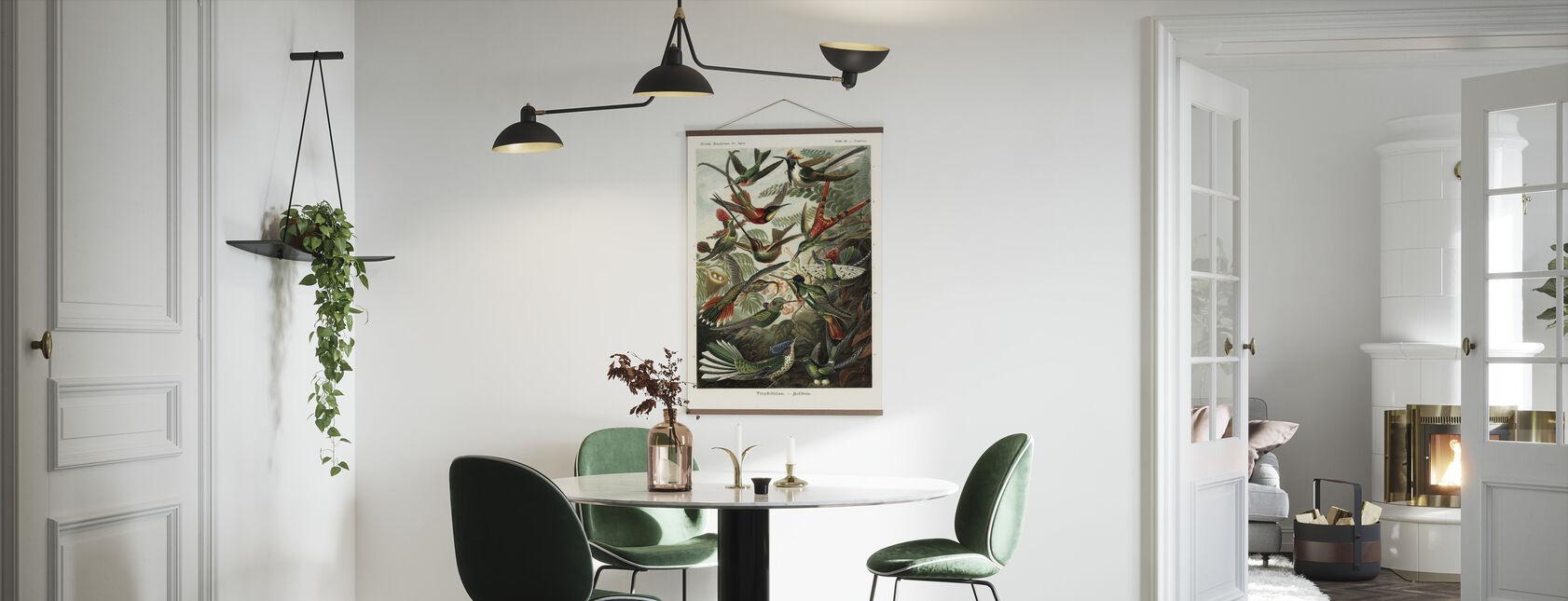 Kolibrie - Poster - Keuken