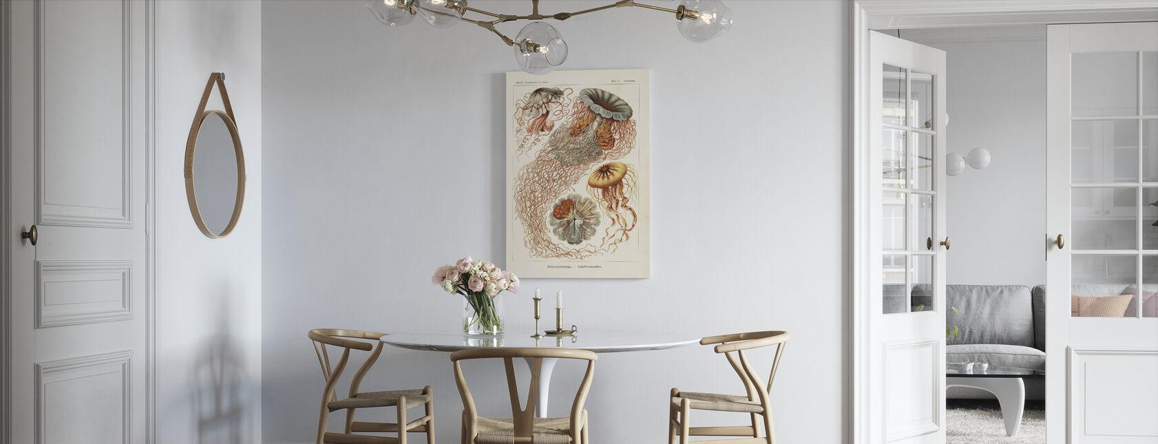 Maneter Art Print - Ernst Haeckel - Lerretsbilde - Kjøkken