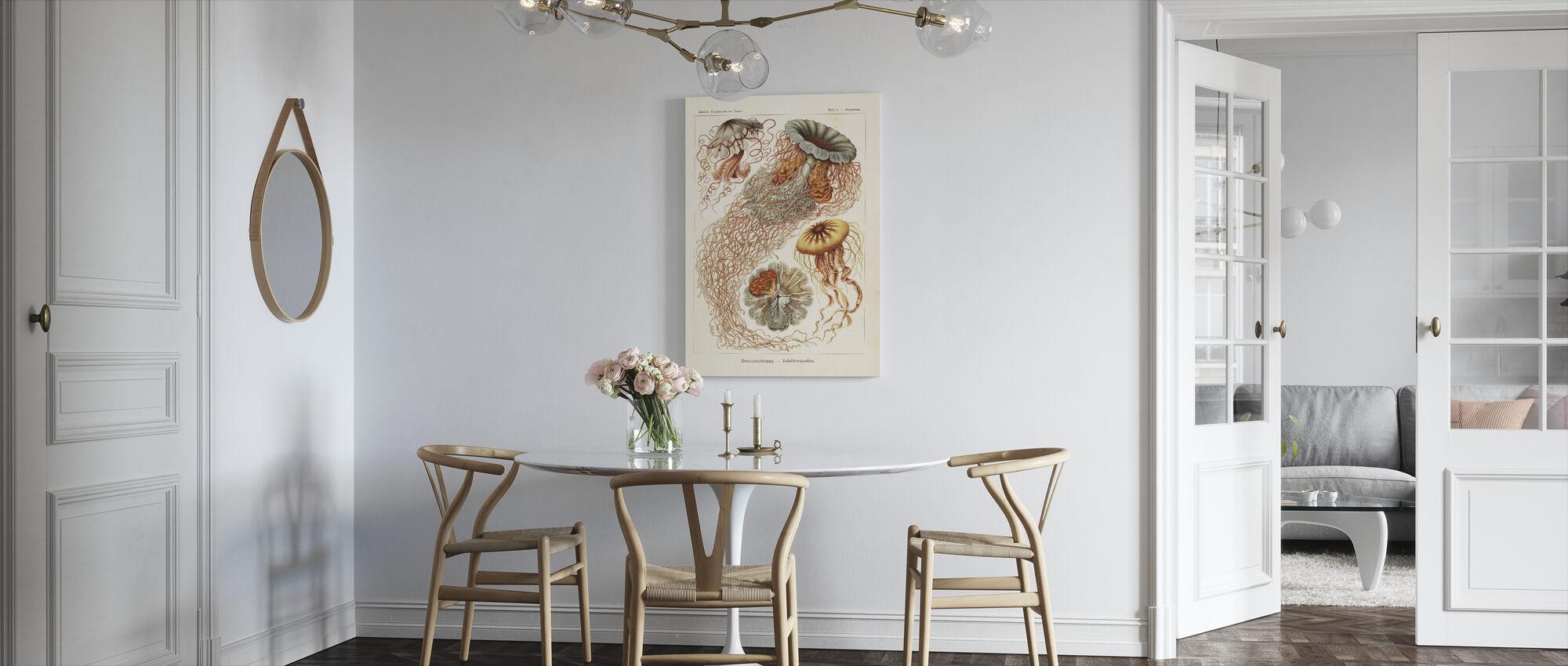 Jellyfish Art Print - Ernst Haeckel - Canvas print - Kitchen
