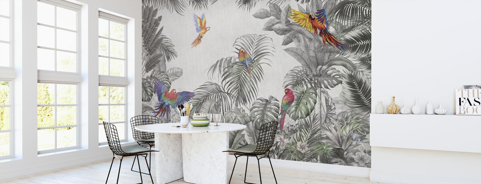 Spille papegøyer - Tapet - Kjøkken