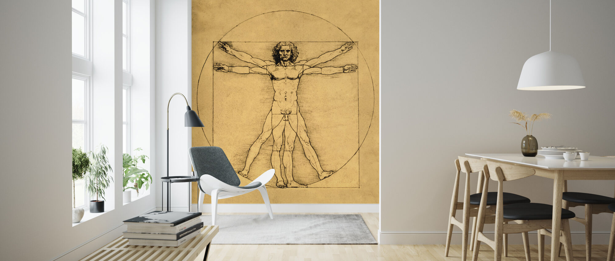 Human Figure - Leonardo da Vinci - Wallpaper - Living Room