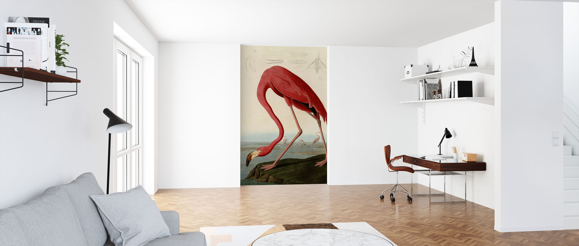 American Flamingo - John James Audubon - Wallpaper - Office