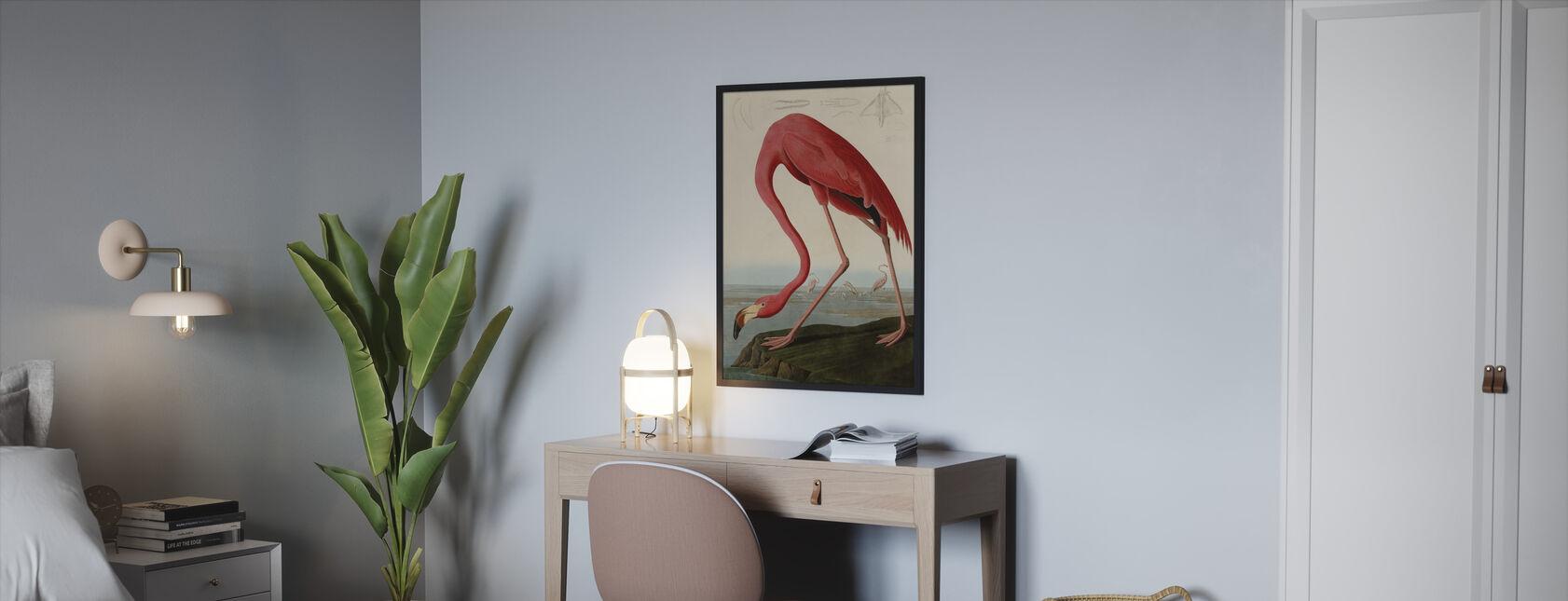 American Flamingo - John James Audubon - Framed print - Bedroom