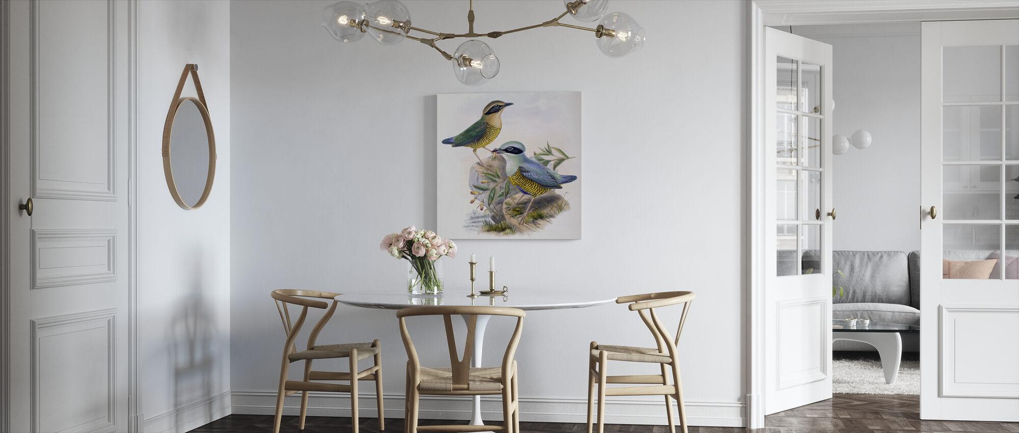Elliots Pitta - John Gould - Canvas print - Kitchen