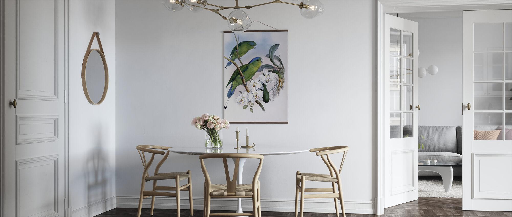 Filippinska Racket-Tailed papegoja - John Gould - Poster - Kök