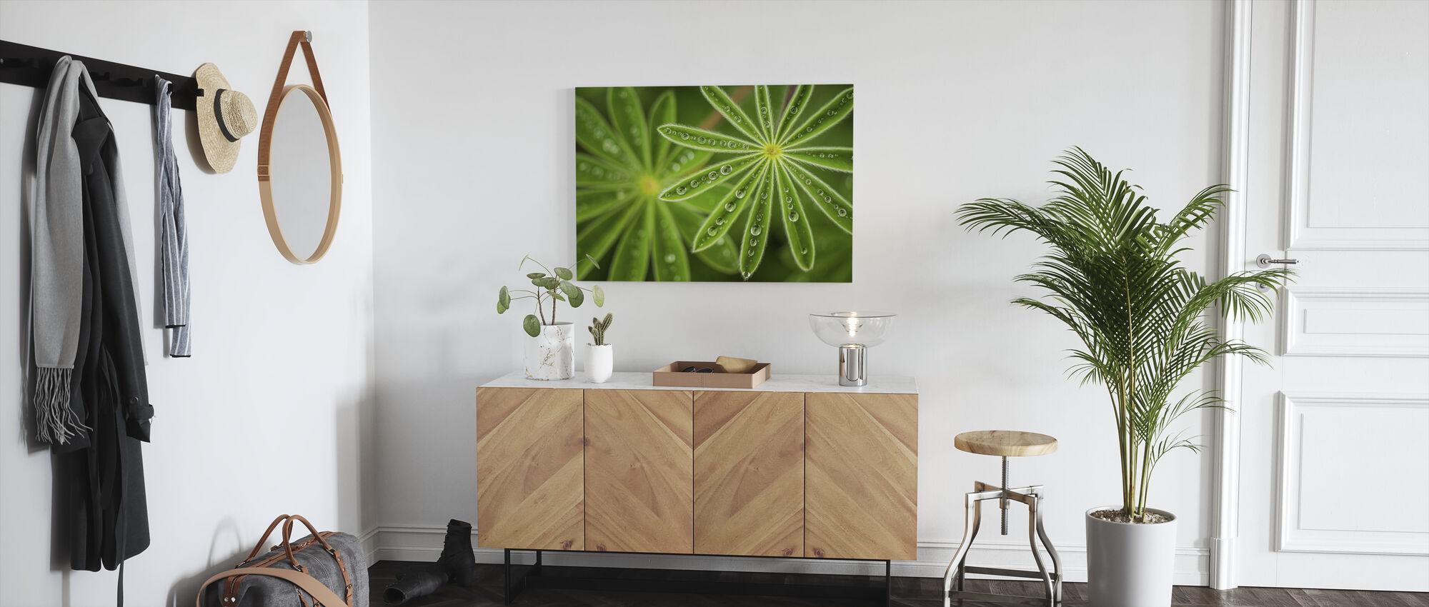 Pearly Lupine - Canvas print - Hallway