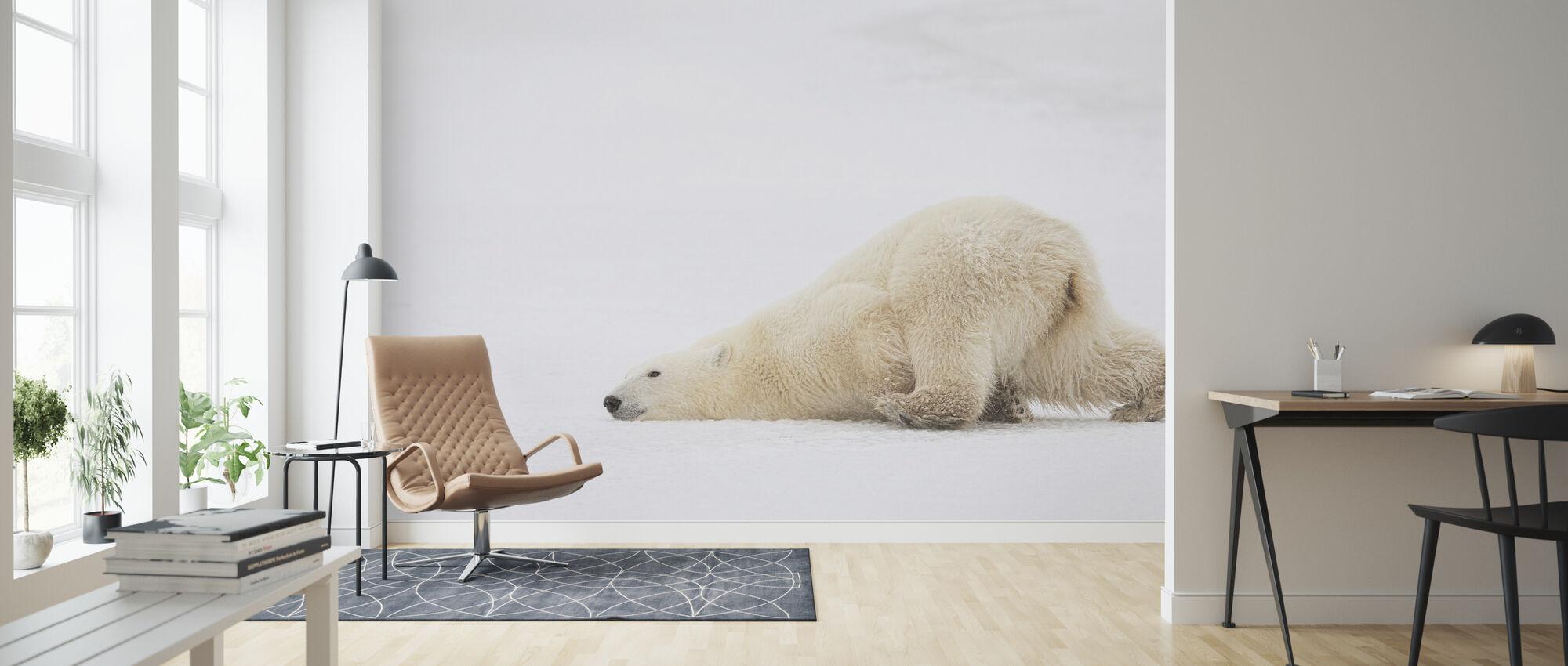 Sliding Bear - Wallpaper - Living Room