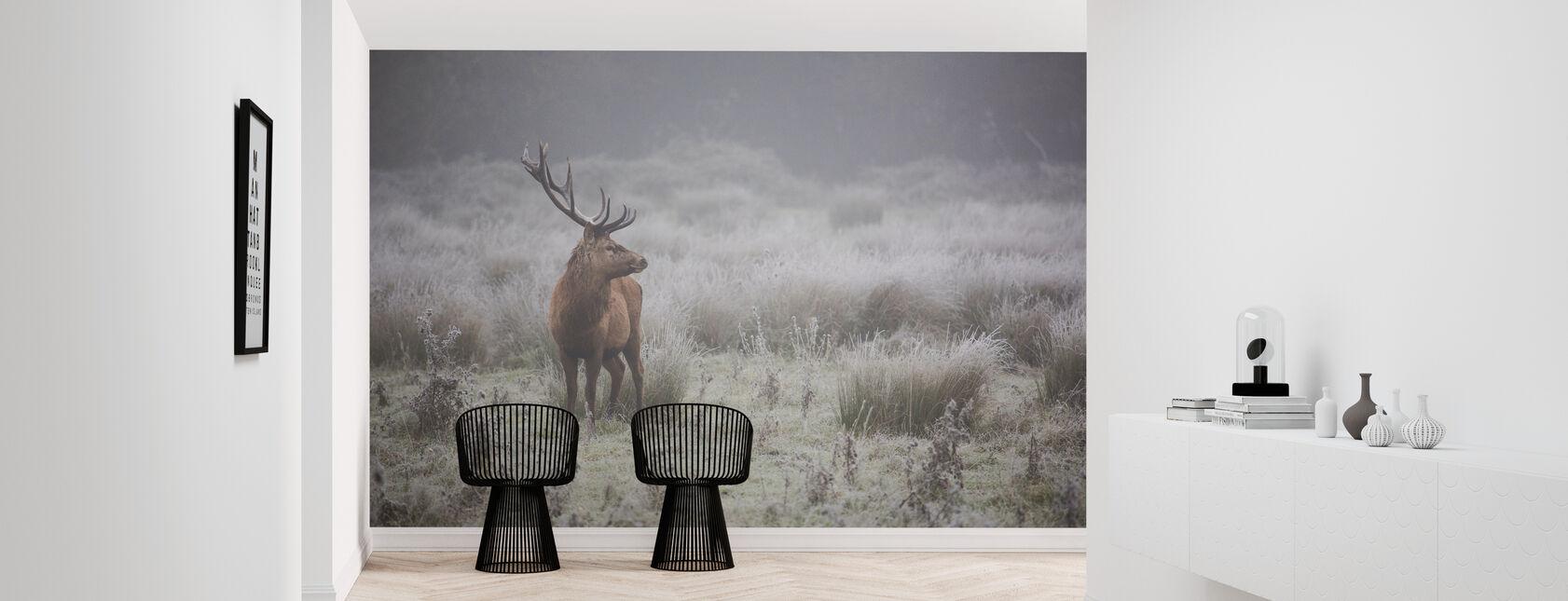 Prideful Deer - Wallpaper - Hallway