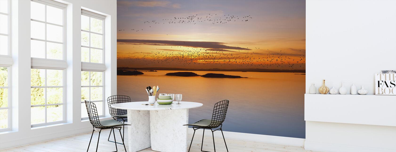 Solnedgang - Tapet - Kjøkken