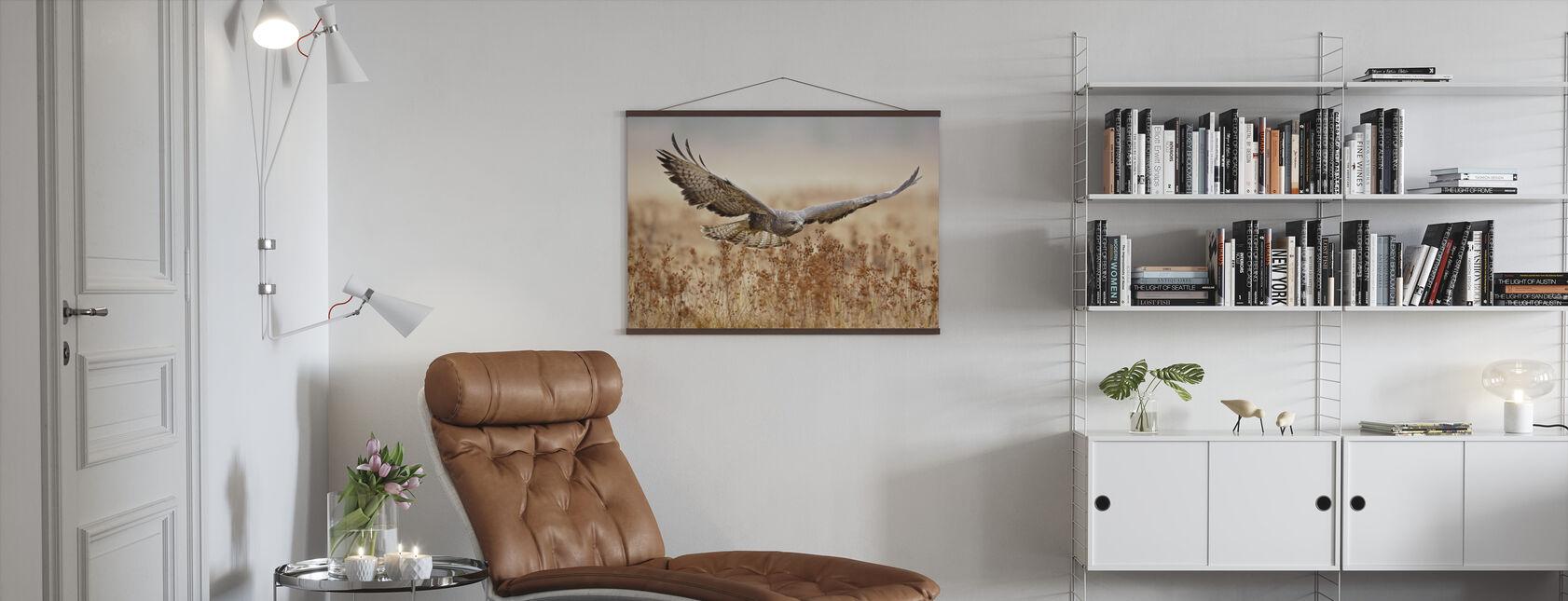 Common Buzzard - Poster - Living Room