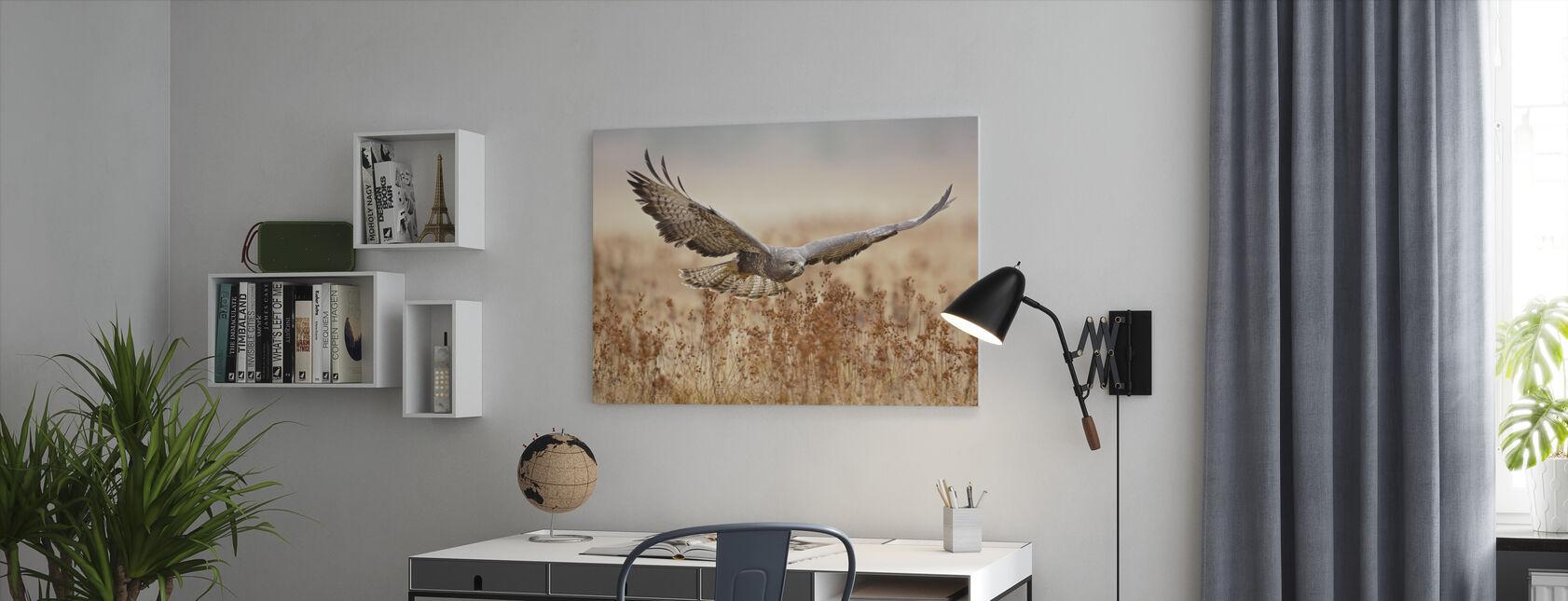 Common Buzzard - Canvas print - Office