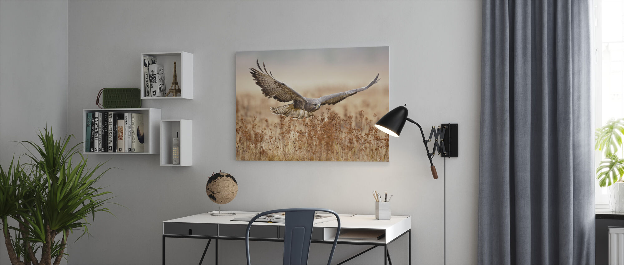 Common Buzzard - Canvas print - Office
