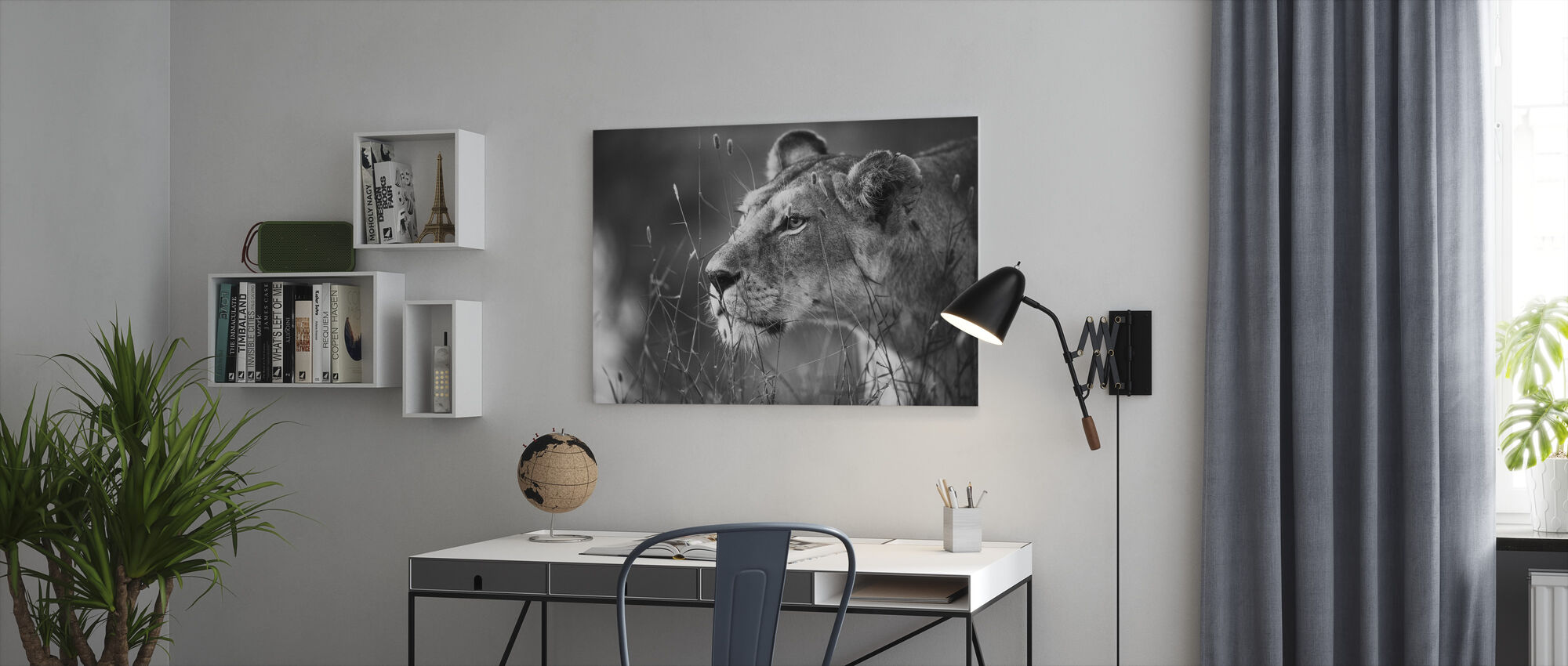 Lioness - Canvas print - Office