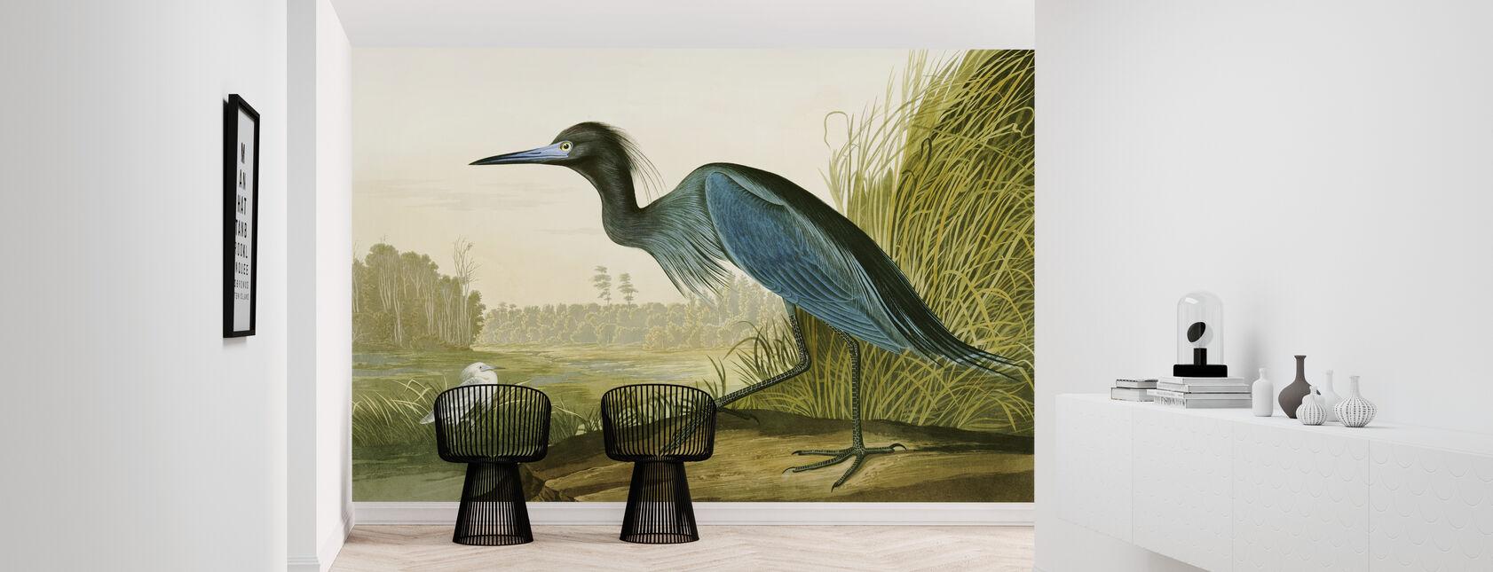 Little Blue Heron - John James Audubon - Wallpaper - Hallway