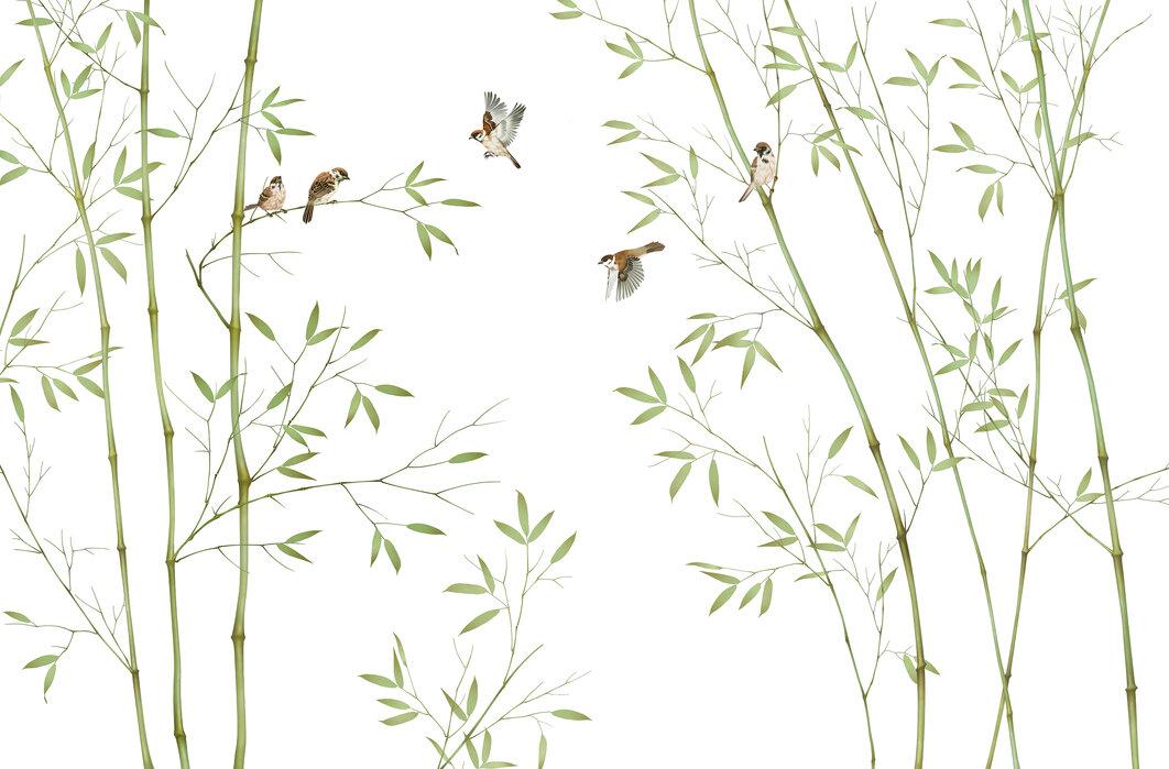 Bambus fugler - Tapet