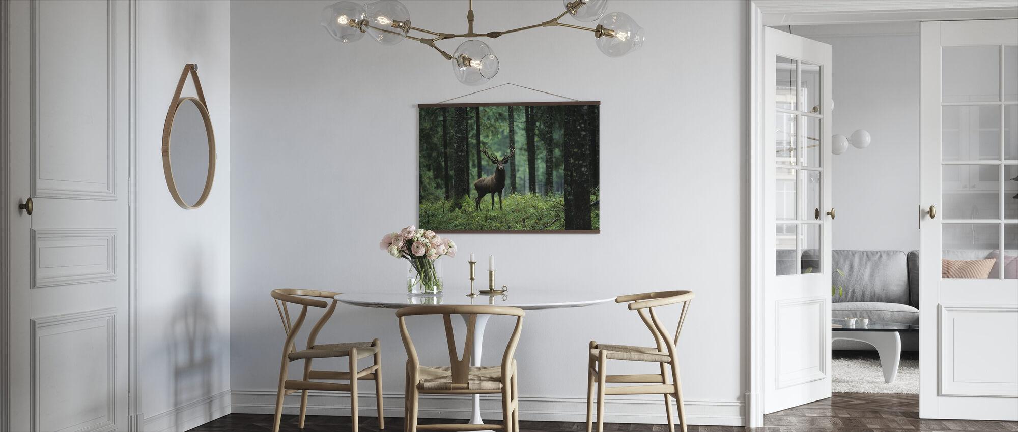 Elg i skog - Plakat - Kjøkken